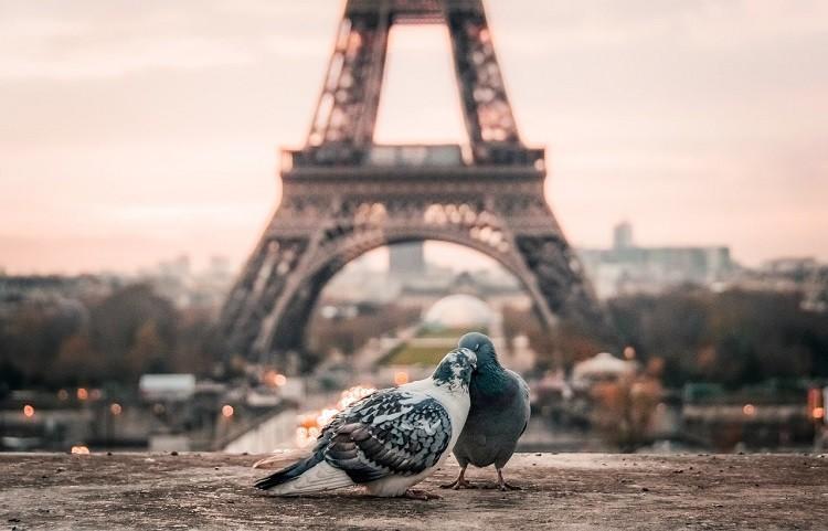 Paryż miastem zakochanych i nie tylko